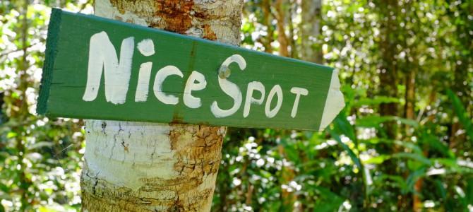 Cassowaries en een Nice Spot…