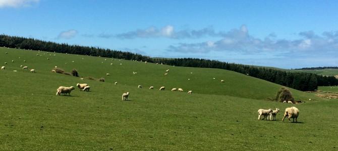 Het weer in Nieuw Zeeland